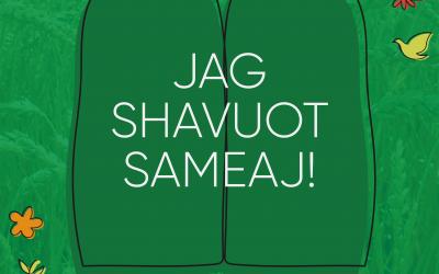 Jag Shavuot Sameaj!
